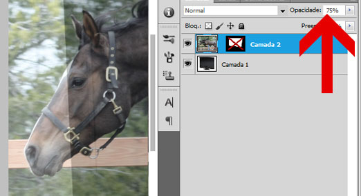 Baixando a opacidade da camada do cavalo