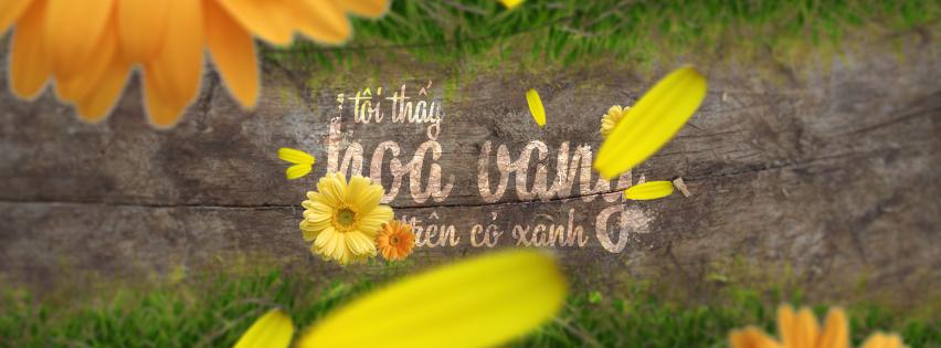 Ảnh bìa facebook tôi thấy hoa vàng trên cỏ xanh