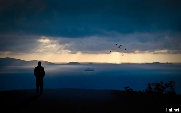 ảnh người đàn ông nhìn ra biển lúc đêm xuống