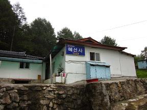 함백산 51km(다운힐 41km) 실트랙