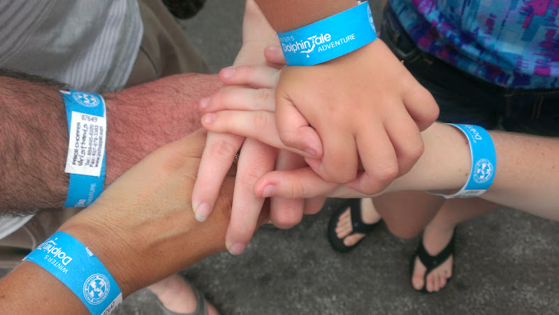 IMAG6323 A Dolphin Tale 2 Experience at Clearwater Marine Aquarium: #WinterHasHope