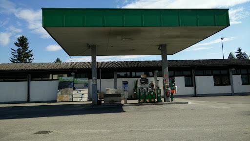 Lagerhaus, Steghofweg 1, 3243 St. Leonhard am Forst, Österreich, Tankstelle, state Niederösterreich