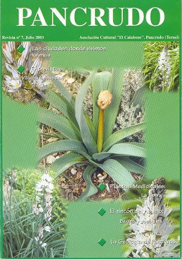Portada Revista Pancrudo nº7 (2003). Gamón (Asphodelus albus), por Pascual Tolosa