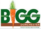 Boston is Growing Gardens