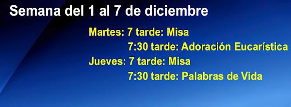 Avisos del 30 de Noviembre de 2014: Comienza el Adviento