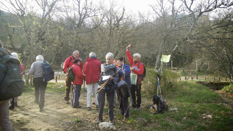 Randonnées des 3 Clubs du 11 avril 2015-Circuit vert de 13 Km DSCN9594