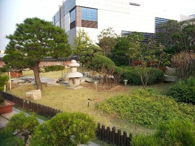Бонсай - красота в совершенстве - Страница 5 20121021_160950