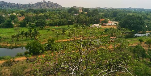 Small town of Papanasam, the Thamarabarani river and the Papanasam Temple