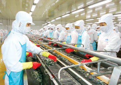 Đơn hàng chế biến thủy sản cần 6 nữ thực tập sinh làm việc tại Hiroshima Nhật Bản tháng 05/2016