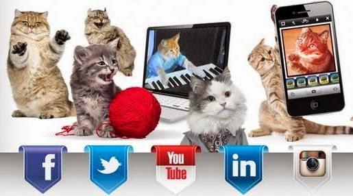 Медиа социальные