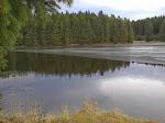 ... und dem Ziegenbrucher Teich.