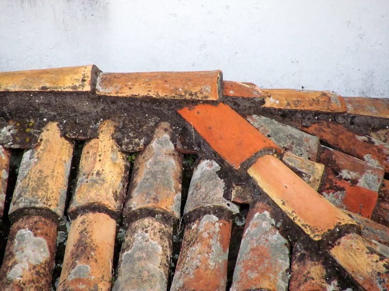Santa Clara mostary roof