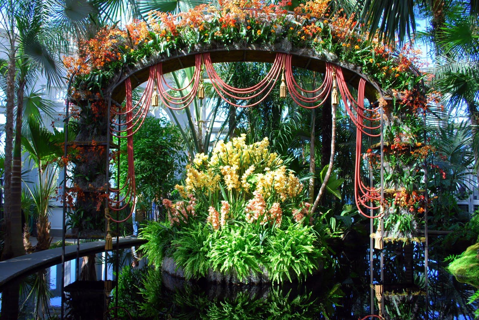Mille Fiori Favoriti The New York Botanical Garden Orchid