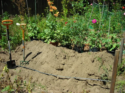 trench in garden with spade and garden fork