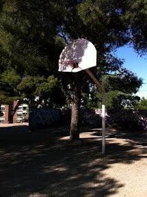 Palomarsola2.jpg