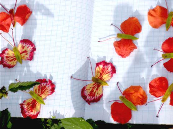 Những cánh bướm được tạo hình từ cánh phượng trong tập vở trắng ngày xưa
