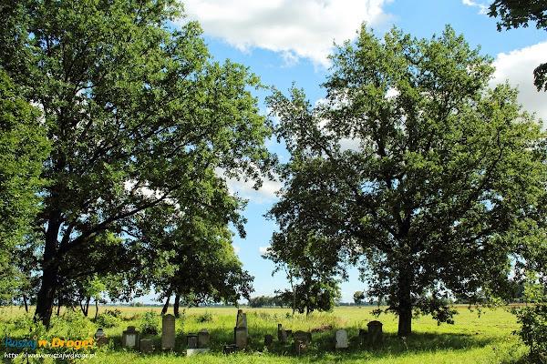 cmentarz żuławskich mennonitow w Perdonowie