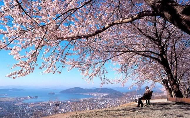Những bài thơ tàn đông, khúc giao mùa Đông-Xuân hay nhất