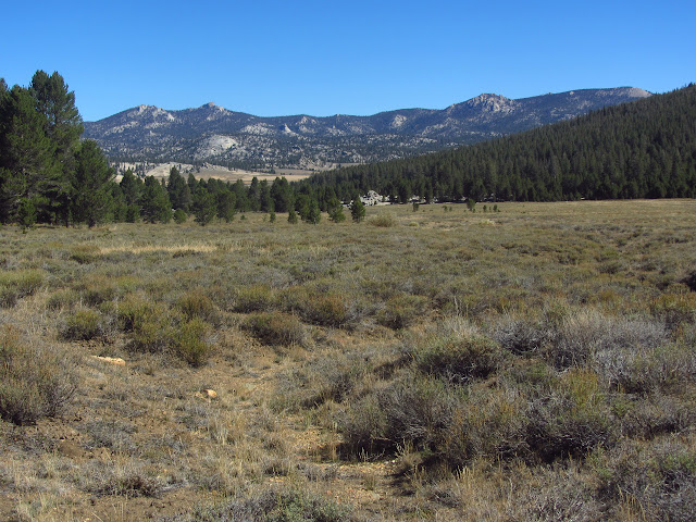 meadow, the foot of Templeton, and a backdrop of low granite mountais