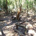 Rainforest signpost (105757)