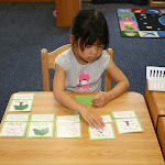 Older Montessori preschool children progress beyond just labeling parts of plants and animals, to learning about the functions of the different parts. They are able to do this because they often have excellent early reading skills!