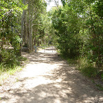 Trail near Pinney's Creek and Pinney's Beach (388235)