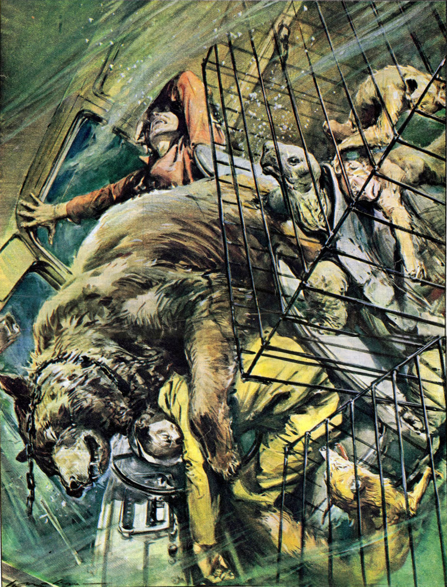 Walter Molino Illustrations, c.1958