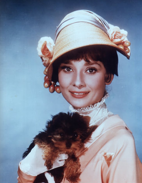 Audrey Hepburn and a dog studio photo