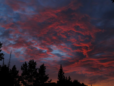 Saturday's sunset