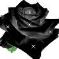 Rose Charles