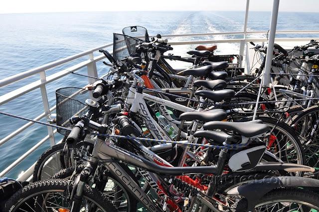 Велосипедом по Балтийскому побережью Польши. Остров Буян. DSC_1413_1024