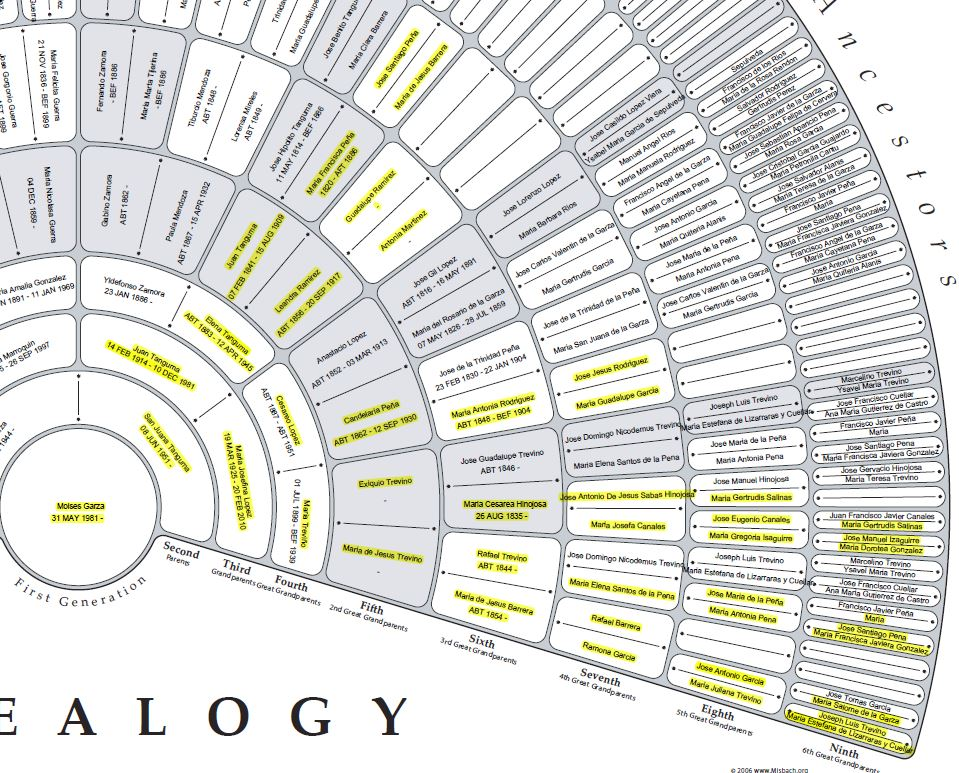Getting Started With X-DNA Genealogy Research