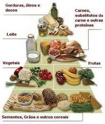 piramede alimentar