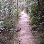 Nellie's Glen Track (10973)
