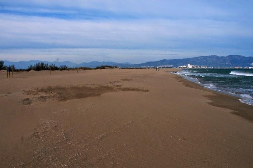 Playa y dunas