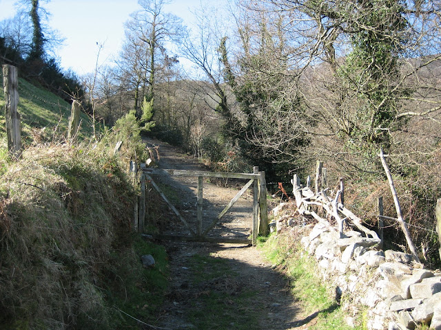 Rutas Montaña Asturias: Camino atravesando Barandón