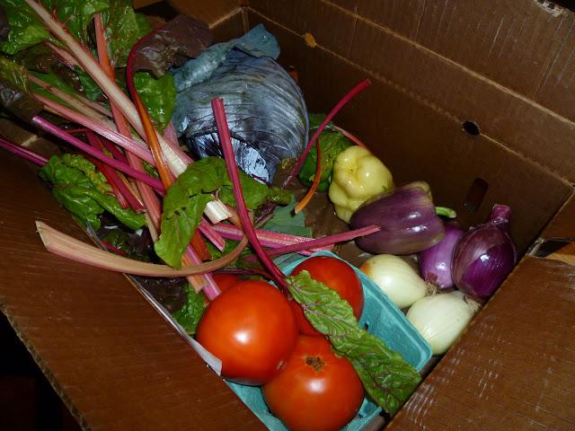 Image of Week 1 CSA Box