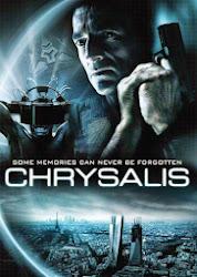 Chrysalis - Dịch  bệnh