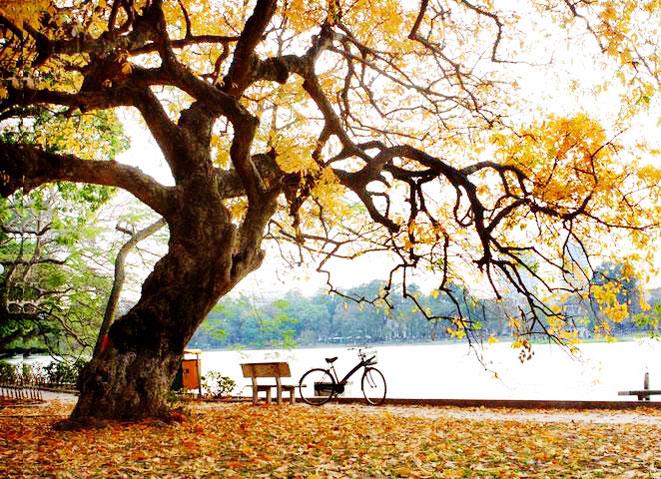 Thơ mùa thu Hà Nội