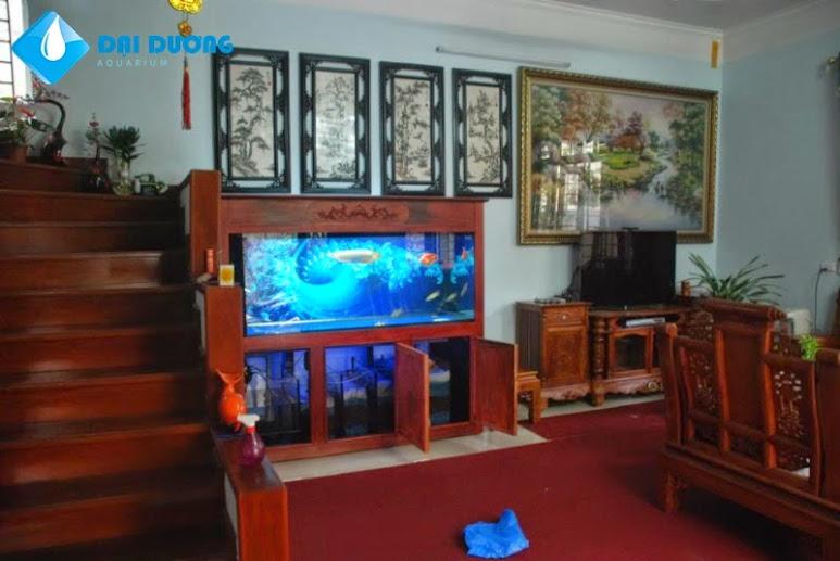 Tủ hồ cá rồng đẹp1
