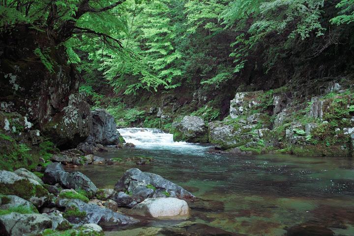 Gorgeous stream