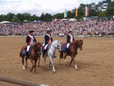 Hengstparade Moritzburg bei Dresden drei Reiter
