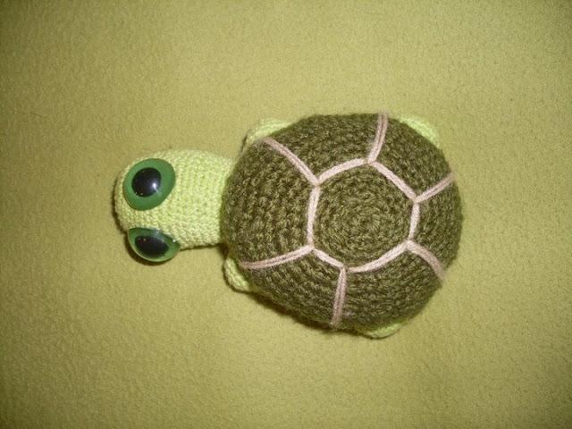 Nikazia Gumis Tortuga