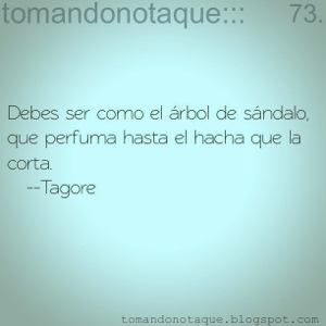 """frases celebres de vida -Tagore"""