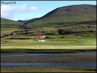 Un tour  d'Islande, au pays du feu... et des eaux. 17-Eriksstadir