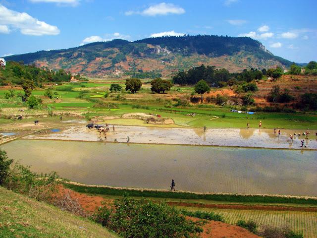 صور من مدغشقر Madagascar 14932239611