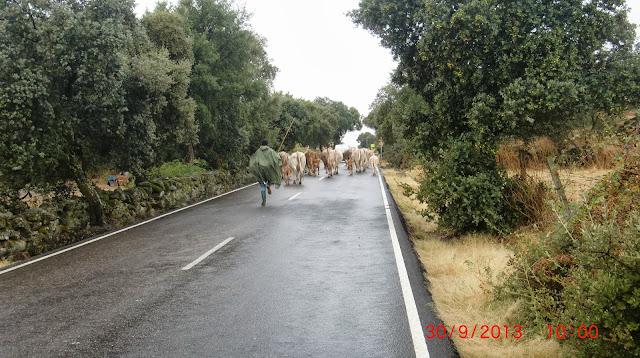 Una vuelta por extremadura, Portugal,Galicia y algun sitio mas. CIMG4394
