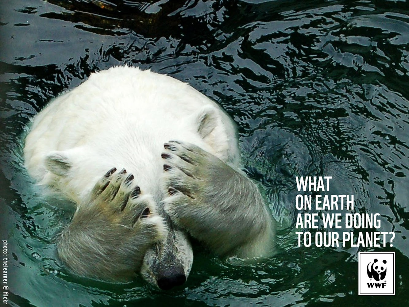 WWF — What On Earth Are We Doing To Our Planet?