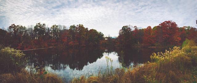 mặt hồ sáng tháng 8