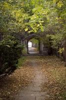 μονοπάτι,πύλη,κήπος,path, gate, garden.